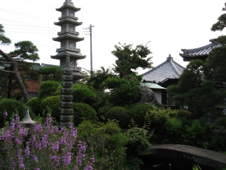 sashima-1-2.jpg