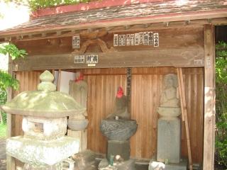 sashima-3-3.jpg