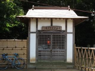 sashima10-4.jpg