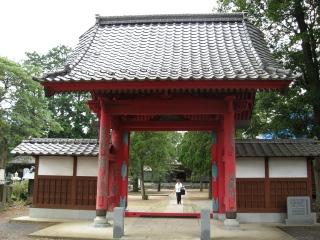 sashima11-1.jpg