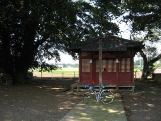 sashima3-2-1.jpg
