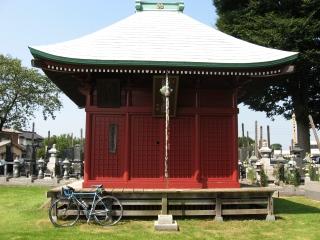 sashima3-3-3.jpg
