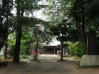 sashima4-2-1.jpg