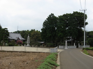 sashima4-5-1.jpg