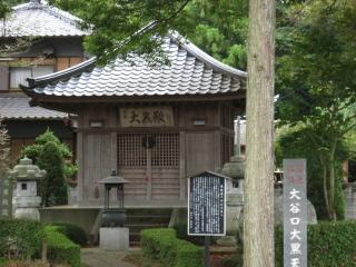 sashima4-5-4.jpg