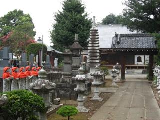 sashima4-6-1.jpg