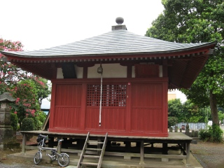 sashima4-6-2.jpg